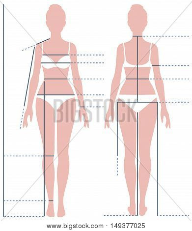 Female body in full length for measuring the size of the figure Stock vector illustration