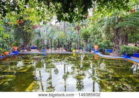 The Majorelle Garden
