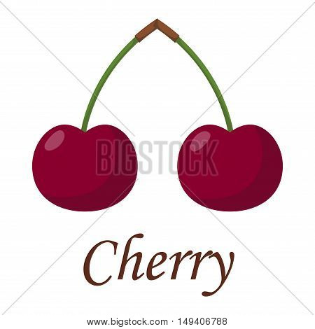 Cherry couple with reflections on white background and cherry couple vector fruit. Sweet cherry couple juicy berry and delicious nature vitamin tasty cherry couple. Gourmet organic vitamins.