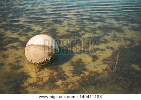 abandoned fishing buoy in the water. old fishing float in the water with chain and net. empty space for your text