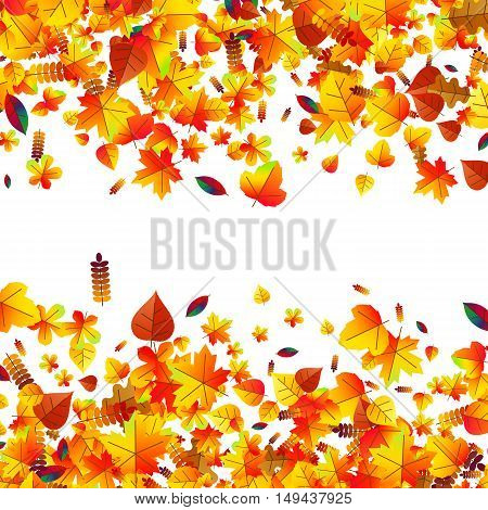 Autumn leaves scattered background with oak maple and rowan