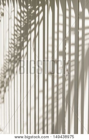 Light and shadows of trees projected onto the white irons bar fence.