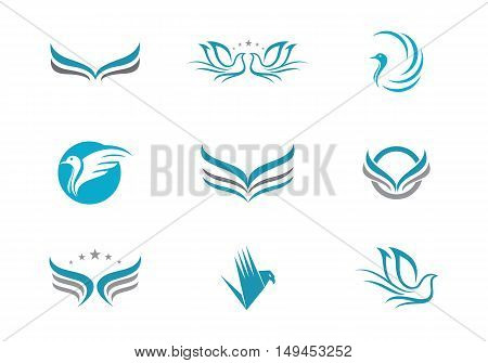Beauty  Bird Logo Template vector icon design