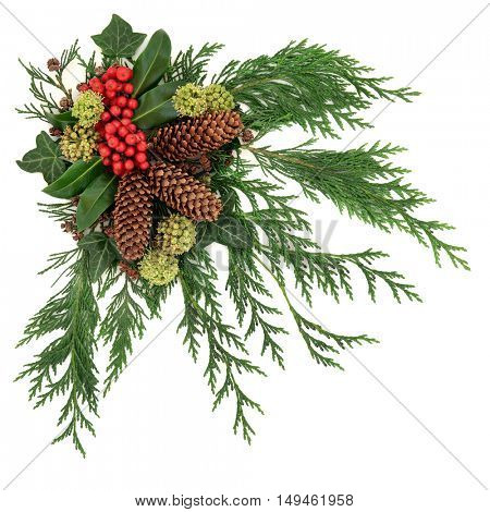 Winter fauna decoration of holly and red berries, ivy, pine cones, cedar cypress and fir over white background.
