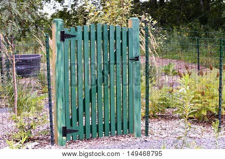 A green wood gate at the entrance to the garden