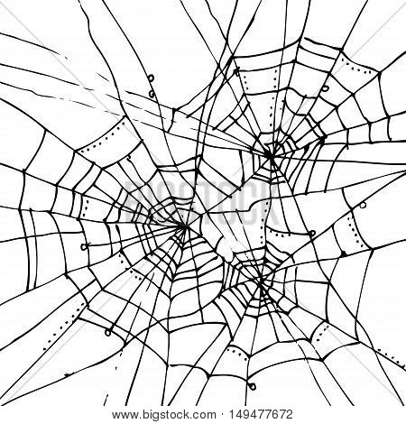 Halloween web background 302-Wt. Eau-forte black-and-white decorative texture vector illustration.