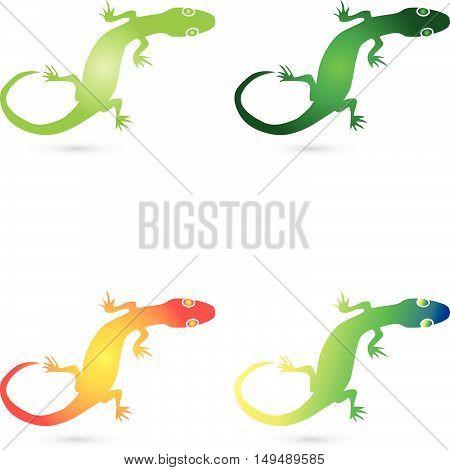 Logo, lizard, salamander, gecko, animal logo, Amphibian
