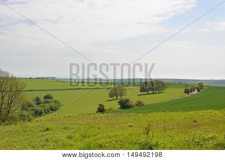 Fields and countryside on The South Downs above Steyning near Worthing in West Sussex England