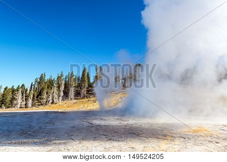 Grand Geyser Eruption View