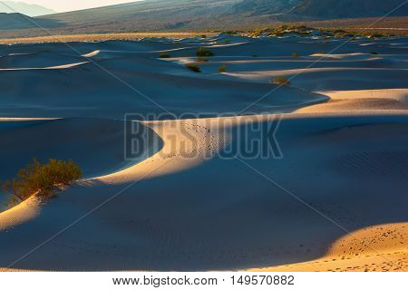 Smooth slopes of sand dunes. Deep morning shadows between the dunes. Early morning in  Mesquite Flat Sand Dunes California
