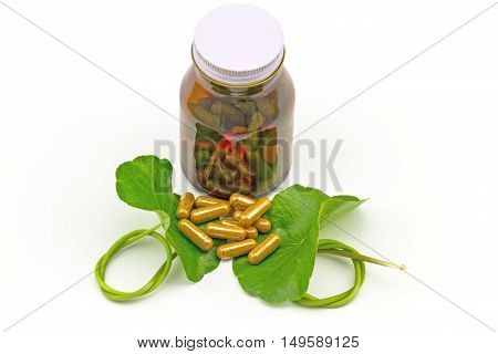 Green Asiatic Pennywort (Centella asiatica ) and yellow pill capsules and bottle tablets on white background