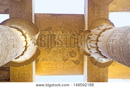 The columns' capitals decorated with floral carved patterns Kom Ombo Temple Egypt.