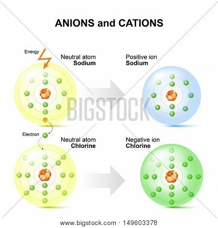Anions and cations for example sodium and chlorine atoms. positive ion - atom that has one of its normal encircling electrons removed. An atom with an extra electron added is called a negative ion.