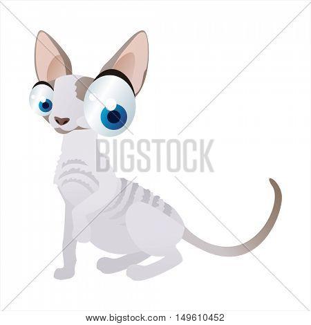 cute vector comic cartoon animal. Cool colorful Sphynx Cat design