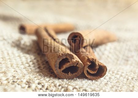 Close-up of cinnamon sticks in blured background. Selective focus.