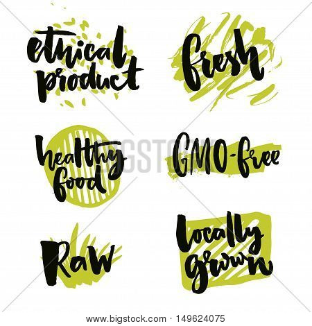 Natural elements for organic food and beverage. Gmo free and locally grown signs. Rough typography on green splotches. Raw and ethical product stickers. Vector symbols