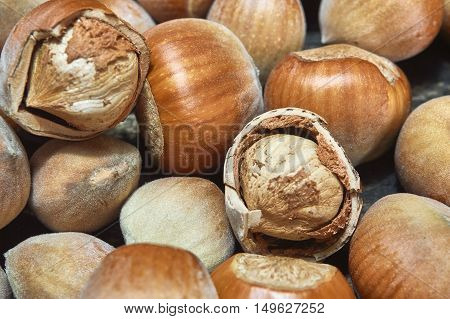 Fresh brown hazelnut as background in closeup. Selective focus.