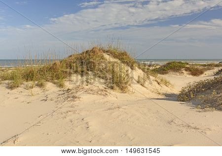 Sand Dunes on the Gulf Coast of Texas at Boca Chica State Park