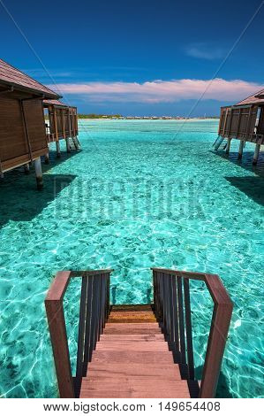 Tropical island with sandy beach with palm trees and tourquise clear water in Maldives