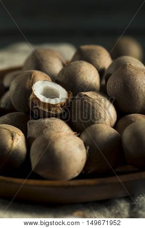 Raw Organic Coconut Coquito Nuts
