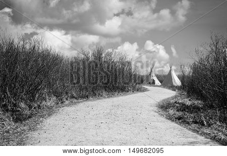 black and white horizontal image of two white teepee sitting at the end of a long winding gravel foot path with shrubs on either side in the summer time.