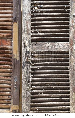 Weathered wooden shutters vertical image for background use.