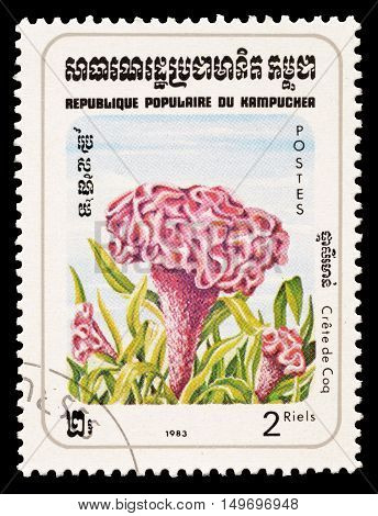 CAMBODIA - CIRCA 1983 : Cancelled postage stamp printed by Cambodia, that shows Plumed cockscomb flower.