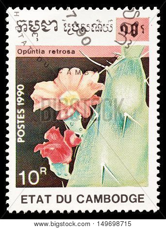 CAMBODIA - CIRCA 1990 : Cancelled postage stamp printed by Cambodia, that shows Opuntia Retrosa cactus.