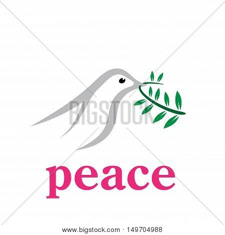 Vector sign dove bird of peace, isolated on white