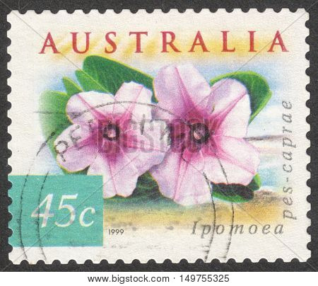 MOSCOW RUSSIA - CIRCA SEPTEMBER 2016: a stamp printed in AUSTRALIA shows a Beach Morning Gloryl (Ipomoea pes-caprae) flower the series