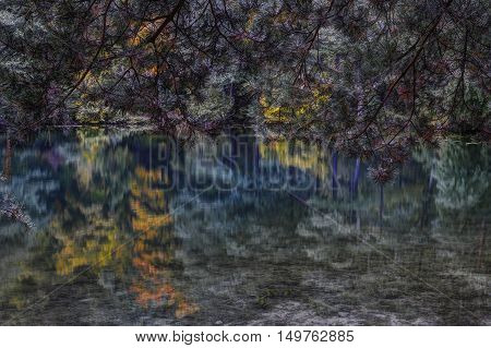 Autumn forest reflection at lake.Balsys lake Vilnius county Lithuania.