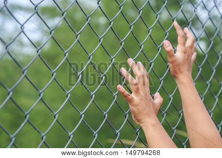 Hand Hanging On Metal Chain Link Fence