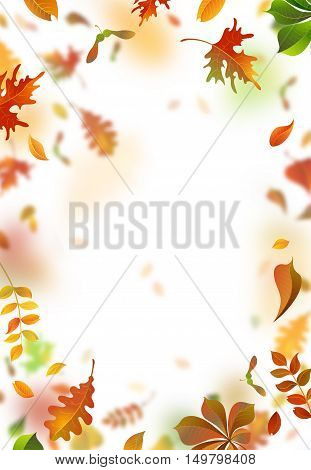 Vector Autumn Leaves Blurred Background.