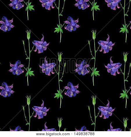 Seamless pattern with watercolor drawing flowers of delphinium at black backdrop, background with painted wild plants, botanical illustration in vintage style, color drawing floral ornament, hand drawn illustration