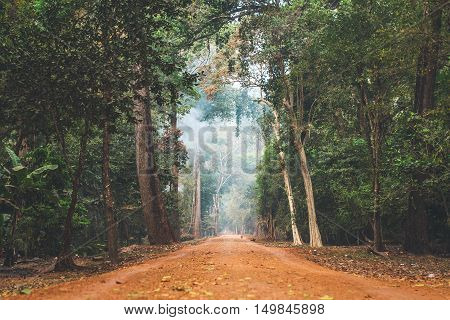 Dirt road stretching through dense Cambodian jungle.
