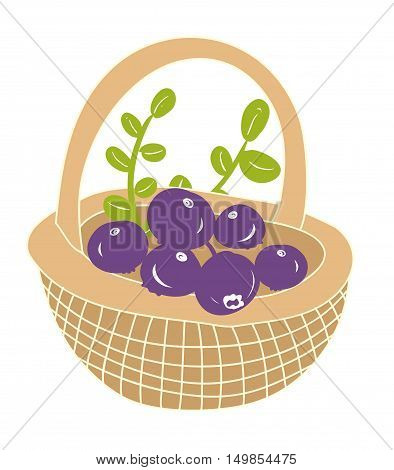 Basket with fresh berries from the forest. Vector illustration.
