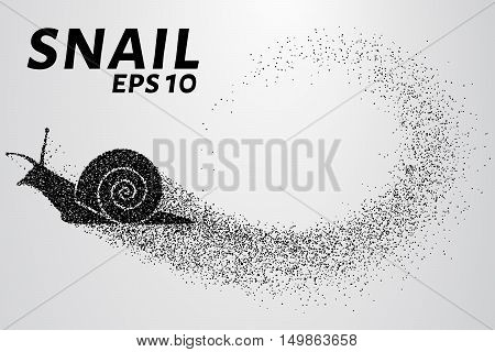 Snail of the particles. Silhouette of snail is of little circles.