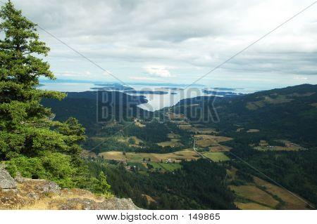 Mountain View To Ocean