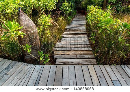 Wooden Teak Walkway Background