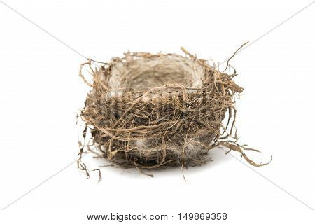 bird's nest isolated on a white background