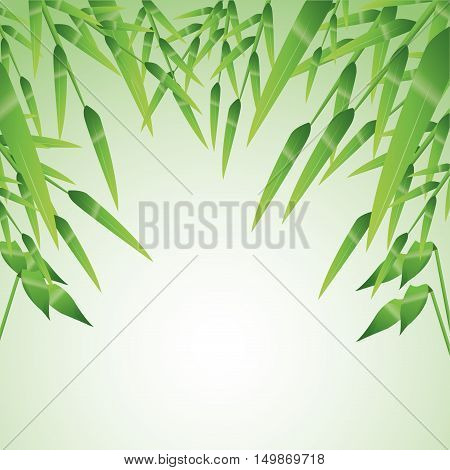 Bamboo leaves icon. Nature plant decoration and asia theme. Colorful design. Vector illustration