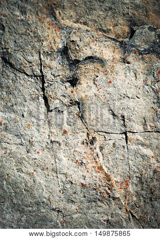 abstract background or texture dark fissures on limestone rock