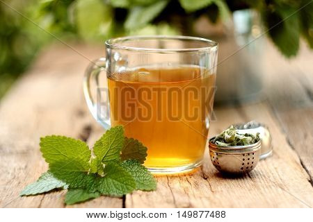 Cup of melissa tea on wooden background