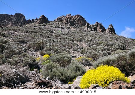 Rocky mount in the island of Tenerife
