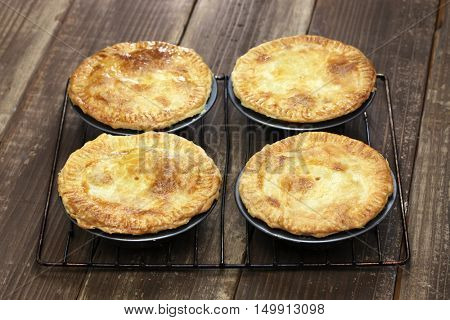 homemade aussie meat pie
