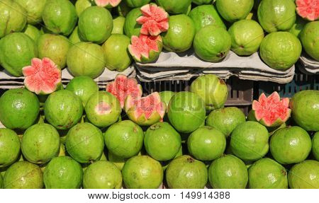 Guava fruits in the market up for sale in Andhra pradesh India
