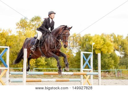 Young Horse Rider Girl On Equestrian Competition