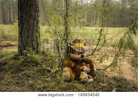 Outdated soft  toys in pines autumn wood