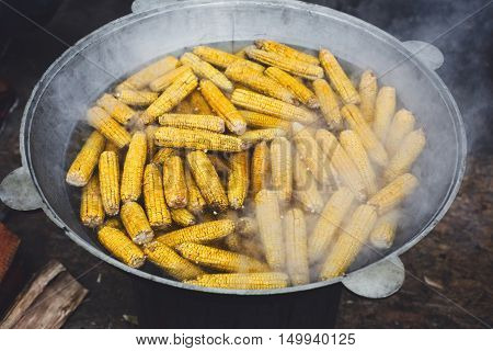 Country fair food cooking. Corns boiled outdoors in big metal cauldron pot. Cookout vegetable meals. Fresh organic, healthy snack, corncobs cooked on grill flame. Street food, fast food.