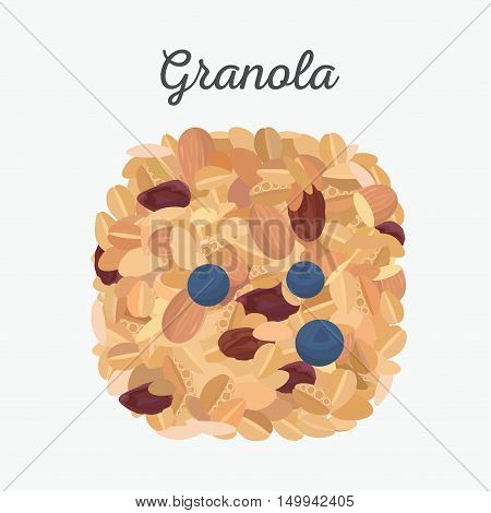 Granola isolated. Flat lay, vector color  illustration.